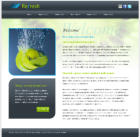 Mobile Friendly Website - 54